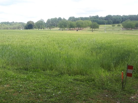 Vente terrain 1793 m2