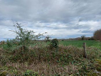 terrain à Dognen (64)