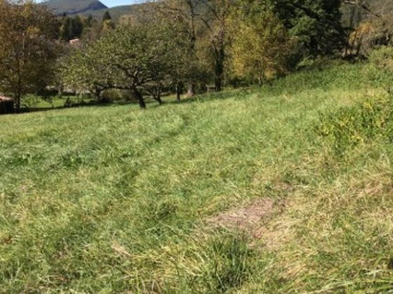 Vente terrain 5245 m2