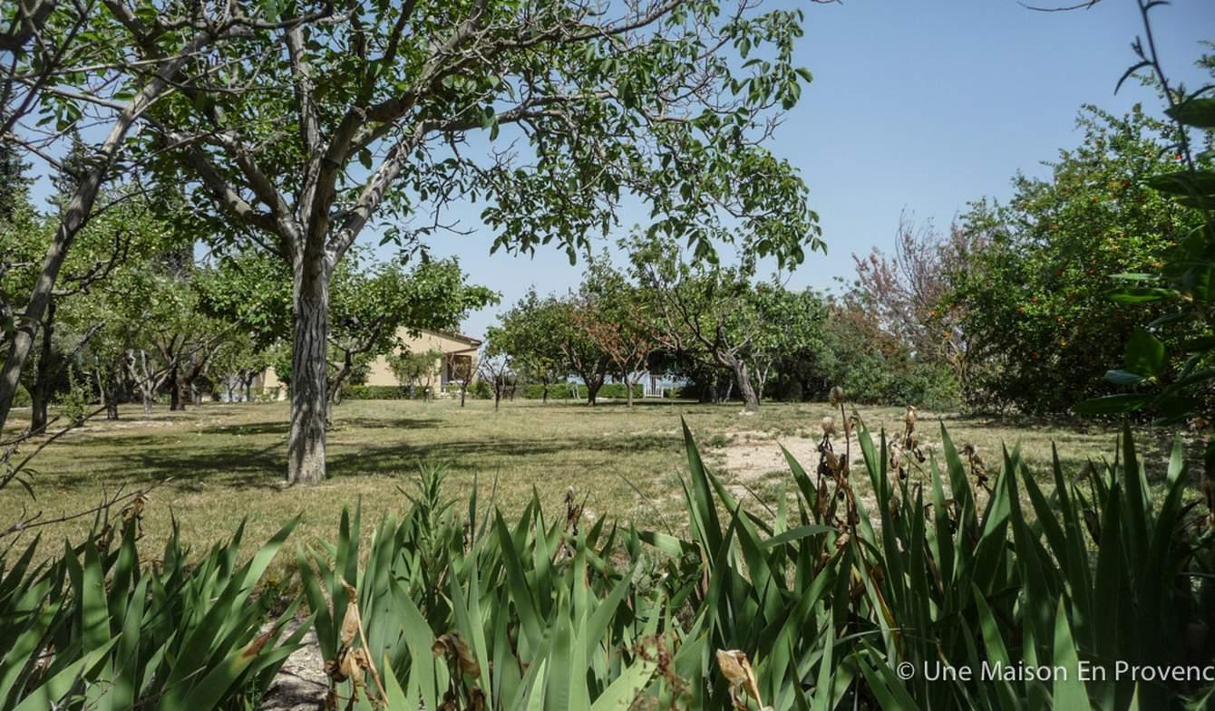 Maison avec piscine et jardin Pujaut