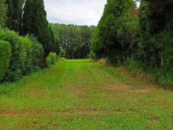 terrain à Piney (10)