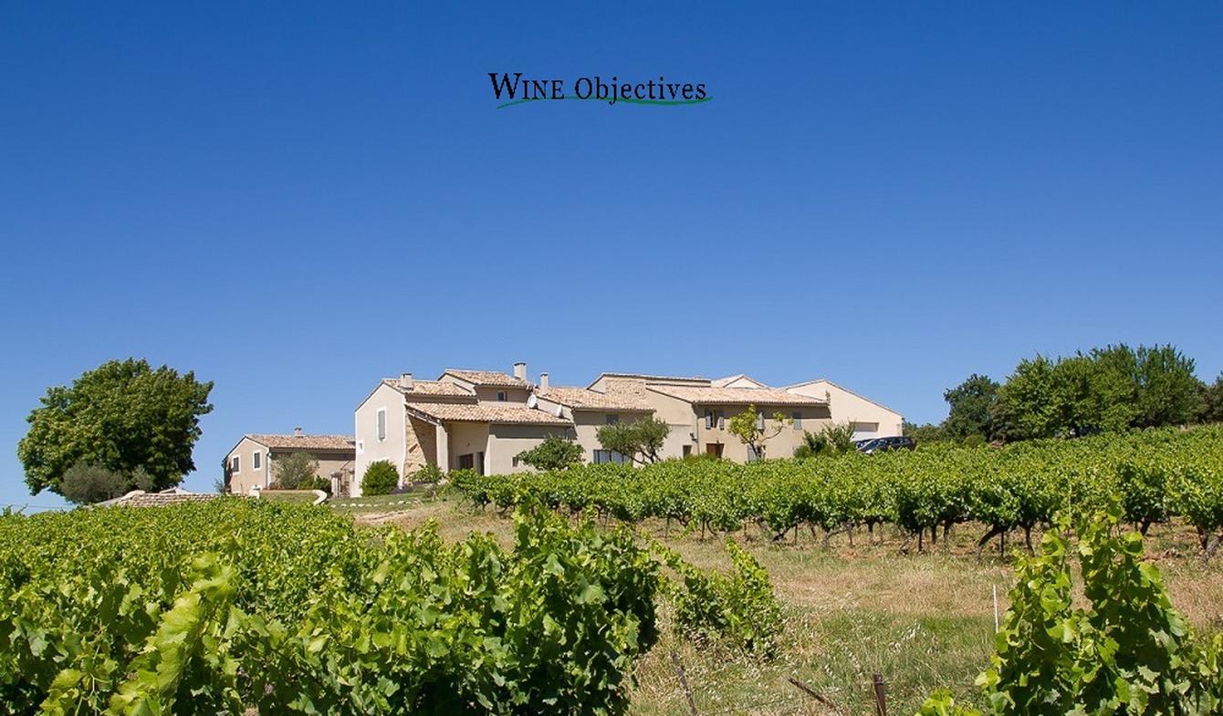 Propriété viticole avec piscine et dépendances Bollene
