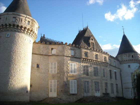 Vente château 30 pièces 800 m2