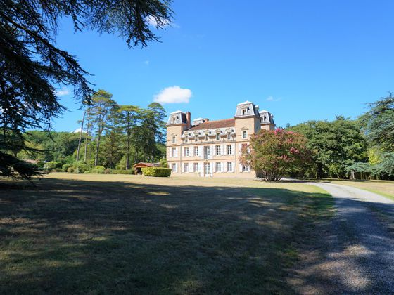 Vente château 19 pièces 620 m2