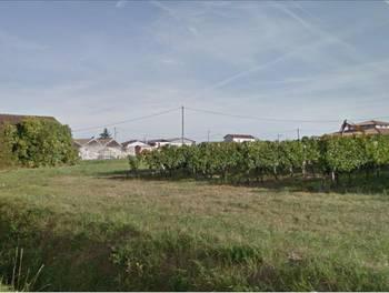 Terrain 1463 m2