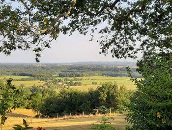 terrain à Castillon d'arthez (64)