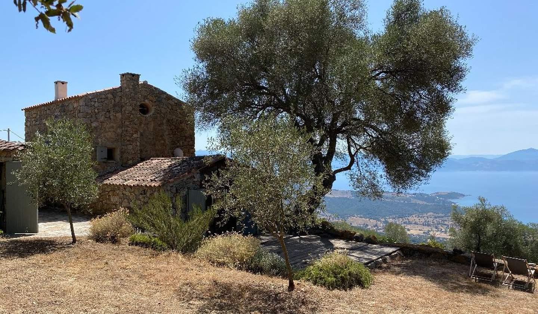 Property Ajaccio