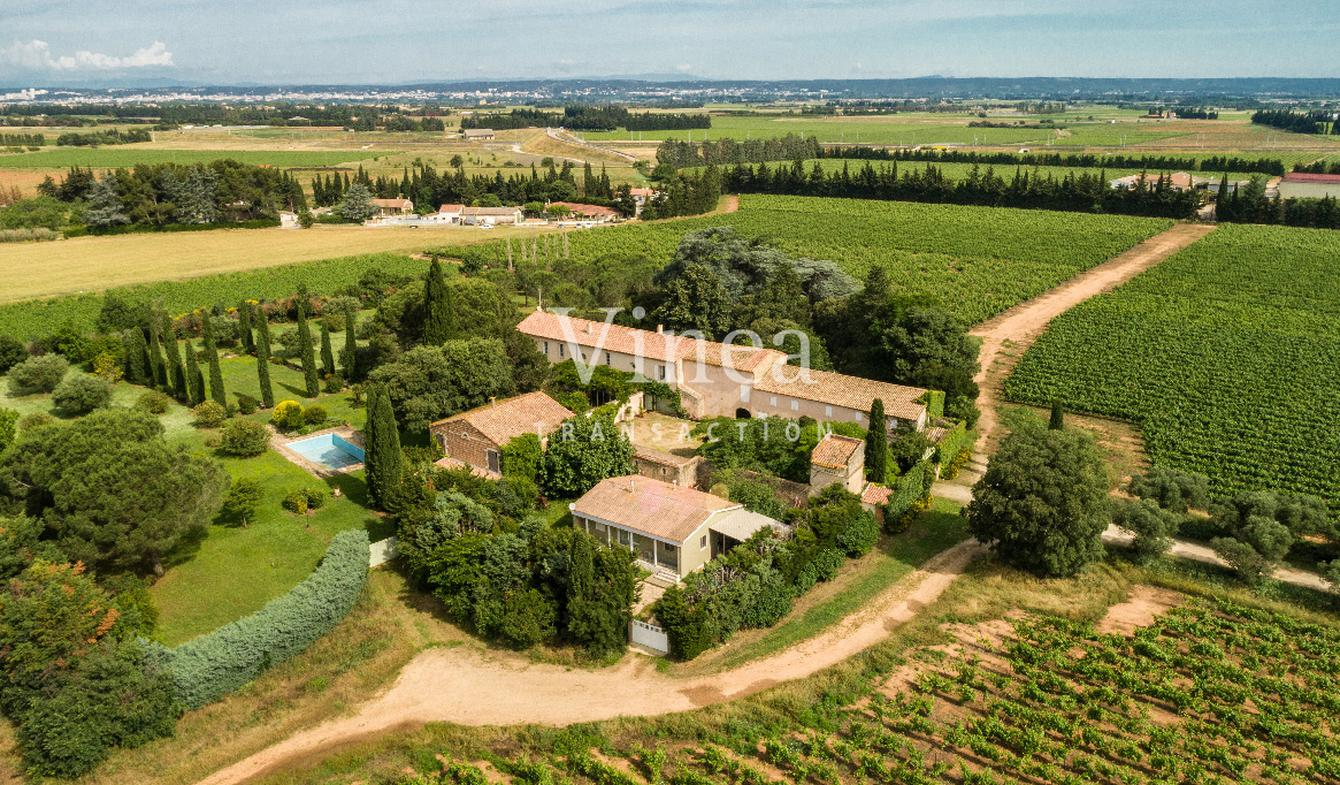 Vineyard with pool and outbuildings Gard