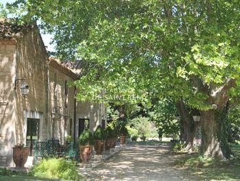 villa à Fontvieille (13)