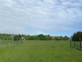 terrain à Kerbach (57)