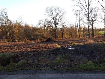 terrain à Nuret-le-Ferron (36)