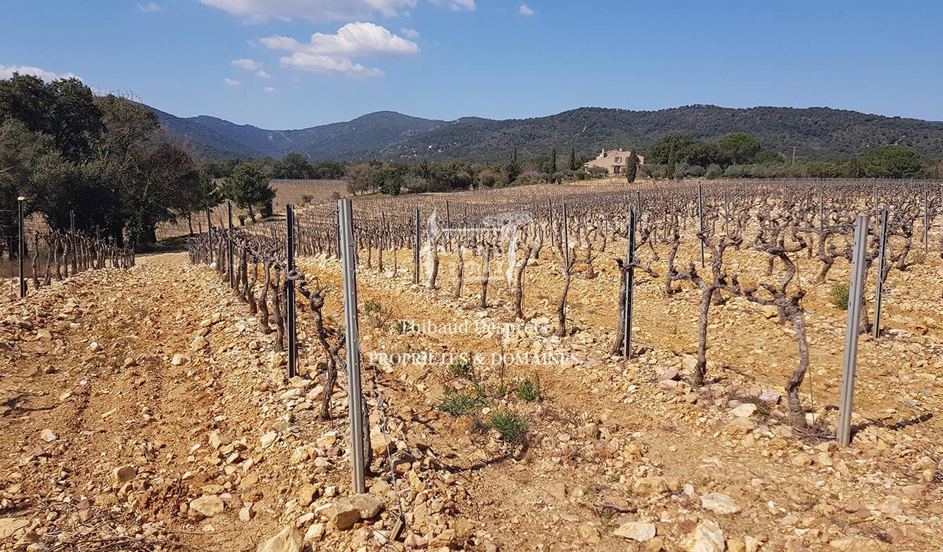 Propriété viticole Saint-Tropez