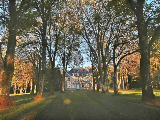 Vente château 15 pièces 590 m2