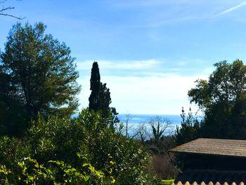 terrain à Bastia (2B)
