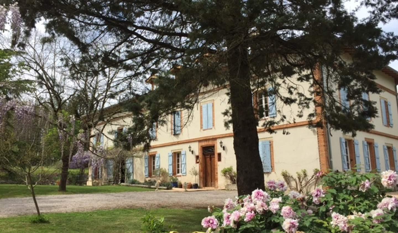House with pool and terrace Loupiac