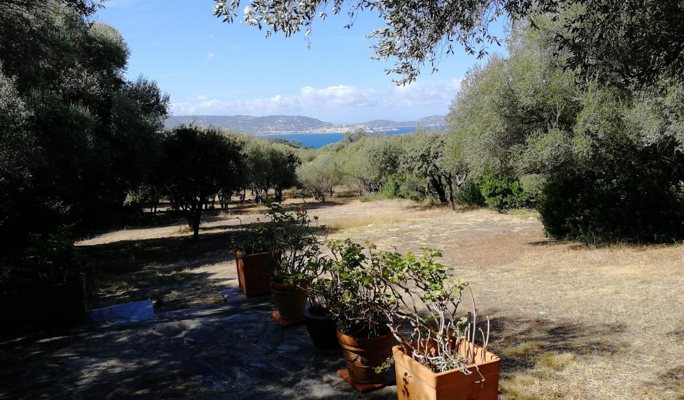 Terrain avec vue panoramique en bord de mer Lumio