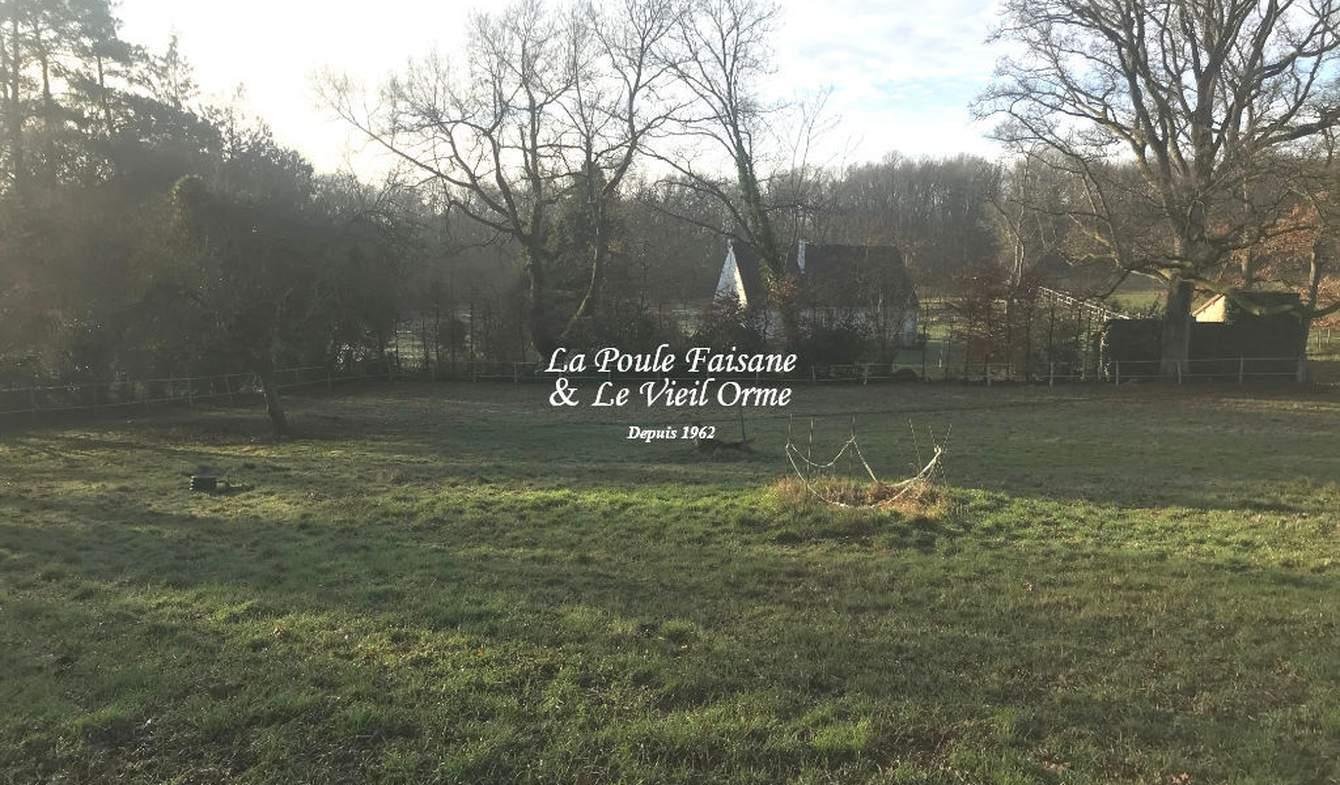 Terrain et forêt Poigny-la-Forêt