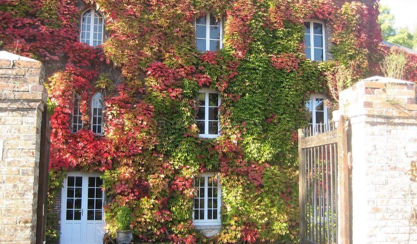Maison Fontainebleau