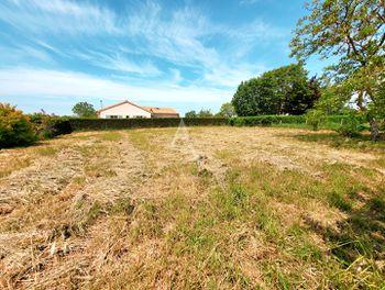 terrain à Thouarcé (49)