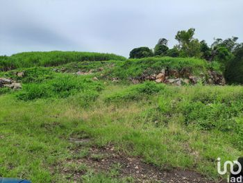 terrain à Sainte Suzanne (974)