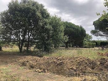 terrain à Saint-Georges-d'Oléron (17)