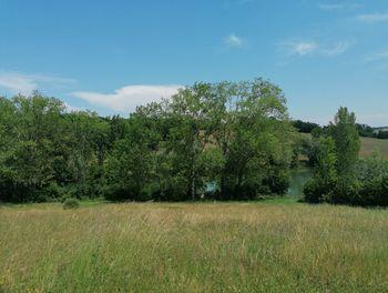 terrain à La Salvetat-Belmontet (82)