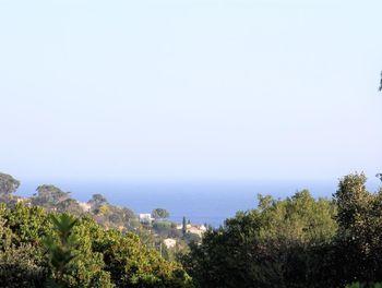 terrain à Cavalaire-sur-Mer (83)