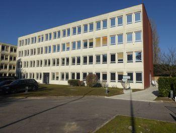 locaux professionels à Ris-Orangis (91)