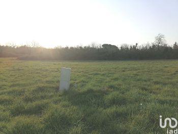 terrain à Coutras (33)