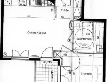 Appartement 2 pièces 42,62 m2