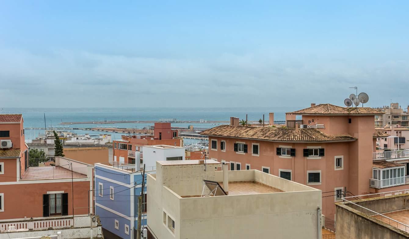 Villa en bord de mer avec jardin Palma