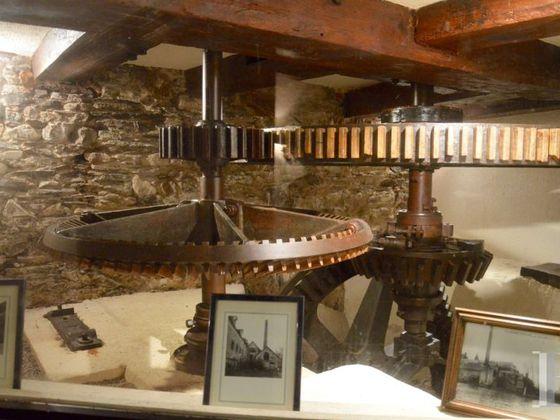 Vente moulin 13 pièces 650 m2
