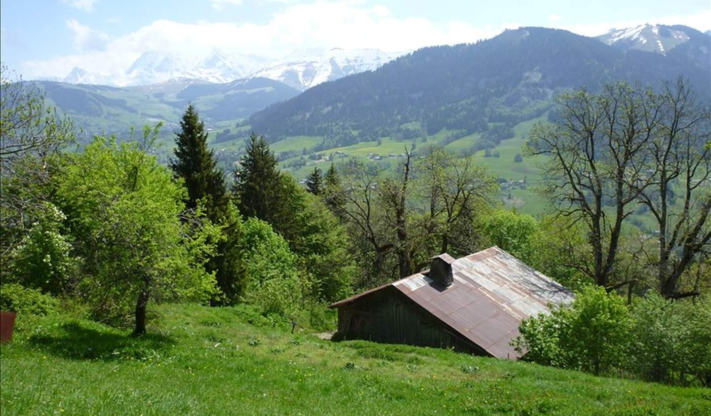 Farm house Praz-sur-Arly
