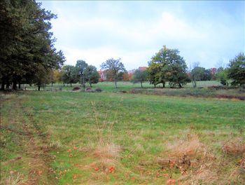 terrain à Chaillac-sur-Vienne (87)