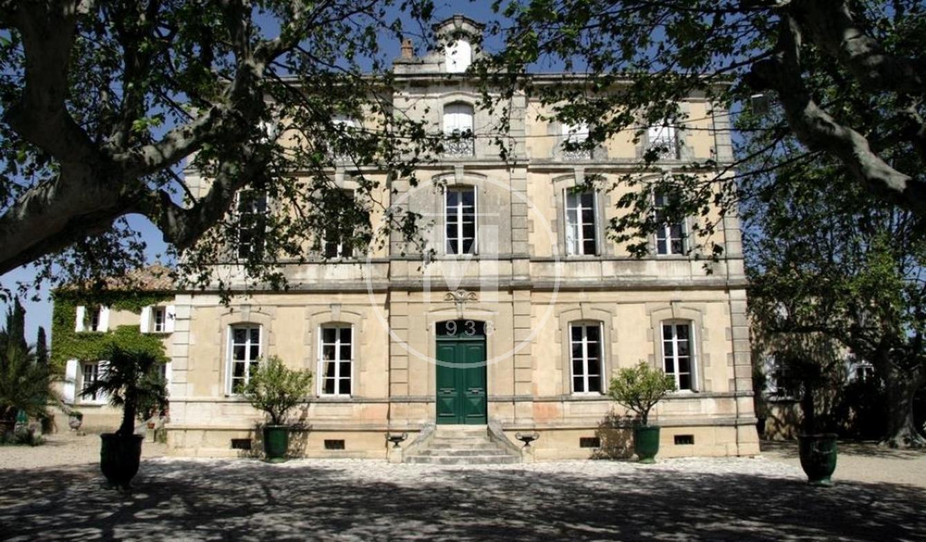 Castle Roquemaure