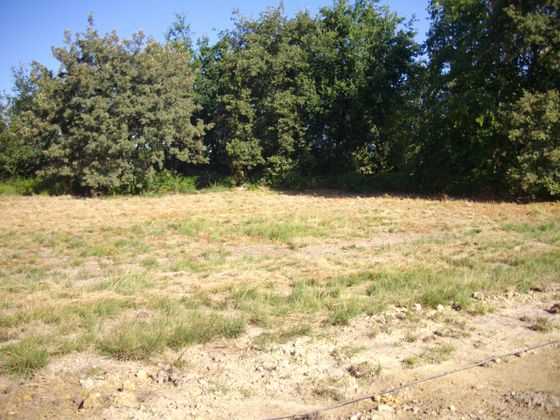 Vente terrain 971 m2