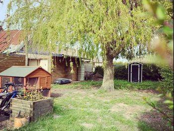 maison à Cayeux-sur-Mer (80)
