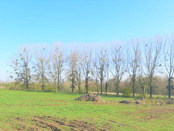 terrain à Frasnoy (59)