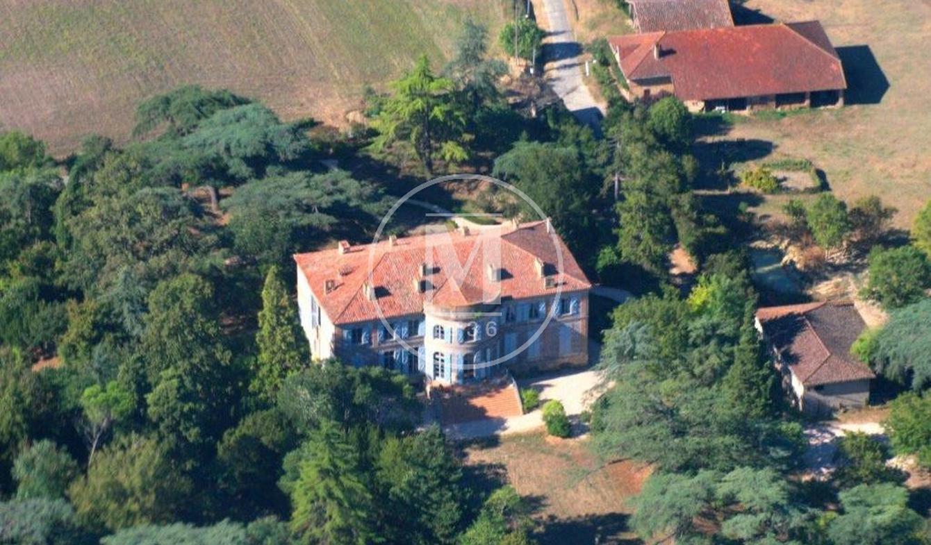 Castle L'Isle-Jourdain