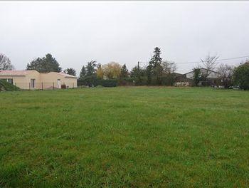 terrain à Saint-medard (17)