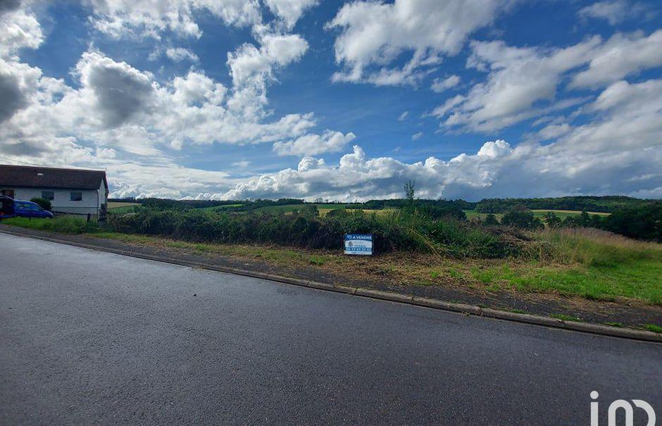 Vente terrain  1000 m² à Laumesfeld (57480), 75 000 €