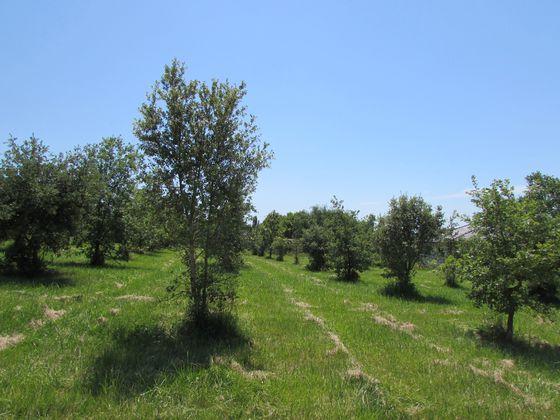 Vente terrain 1792 m2