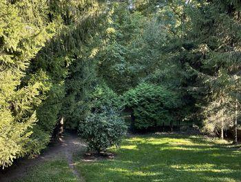 maison à Roches-sur-Marne (52)