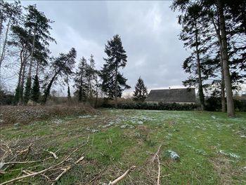 terrain à Sainte-Thorette (18)