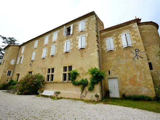 Vente château 13 pièces 411 m2