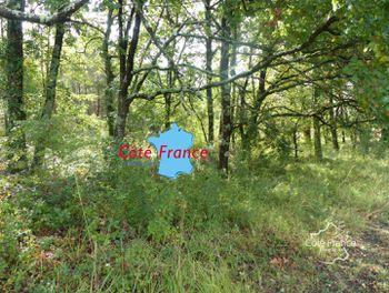 terrain à Lamothe-Montravel (24)