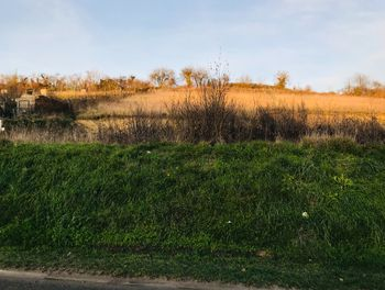 terrain à Montigny-l'Allier (02)