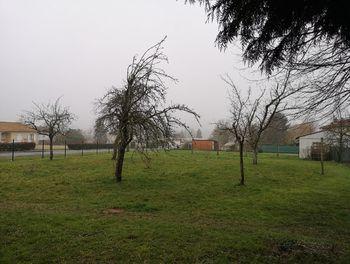 terrain à Montemboeuf (16)