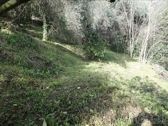 Vente terrain 2833 m2