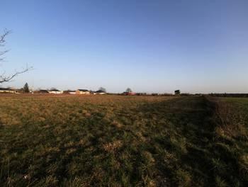Terrain 2320 m2